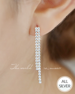 Two lines cubic earring (er1414)
