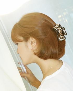Porori hairpin (hp219)
