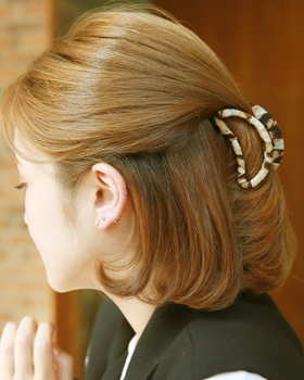 Nusseu hairpin (hp217)