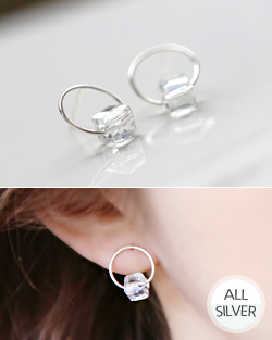 Laura Shine earring (er1546)