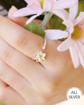 Asta Flower Silver (rg469)