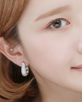 Swan one-touch earring (er1812)